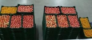 Don de tomates